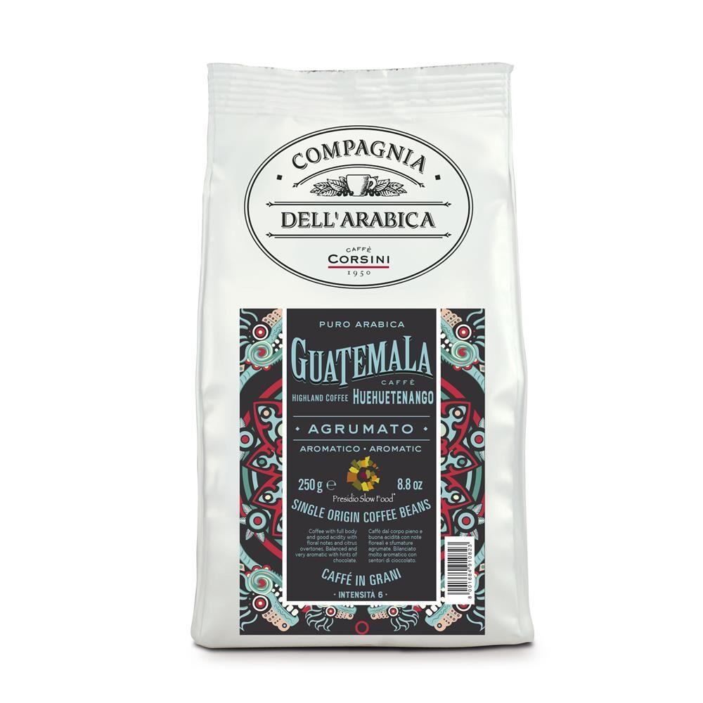 Caffè Corsini Guatemala Huehuetenango Highland Coffee - Compagnia Dell'Arabica 12x 250 g Bohnen im Beutel